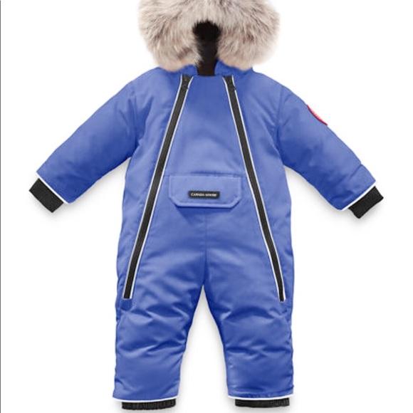 baby blue canada goose